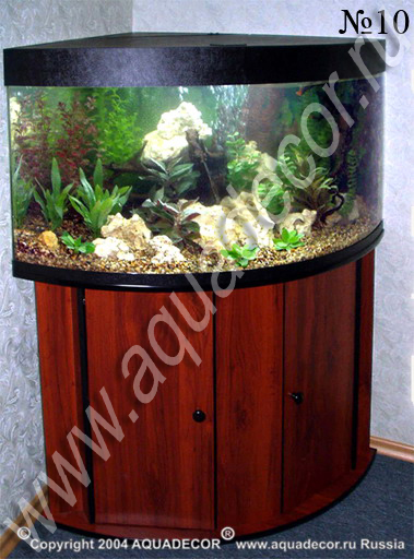 оформление угловых аквариумов фото