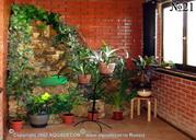 При помощи декоративного водопада и контейнеров с комнатными растениями лоджия будет превращена в зимний сад.
