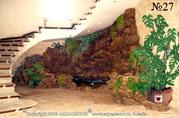 В бассейне среди скалистых берегов, уютно укрывшемся под лестницей, живет водяная черепашка.
