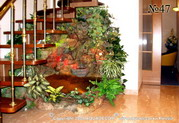 Еще один вариант сочетания лестницы и декоративного водопада, оформленного растениями. В большом бассейне простор для тропических водяных черепах.